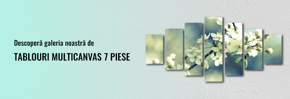 7 Piese
