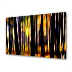 Tablou VarioView MoonLight Fosforescent Luminos in intuneric Abstract Decorativ In padure