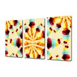 Set Tablouri Multicanvas 3 Piese Abstract Decorativ Supraexpus