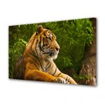 Tablou Canvas Luminos in intuneric VarioView LED Animale Tigru superb