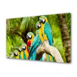 Tablou Canvas Luminos in intuneric VarioView LED Animale Papagali Macaw in mediul natural