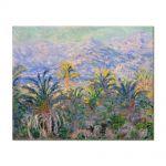 Tablou Arta Clasica Pictor Claude Monet Palm Trees at Bordighera 1884 80 x 100 cm