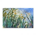 Tablou Arta Clasica Pictor Claude Monet Yellow Irises and Malva 1917 80 x 120 cm