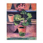 Tablou Arta Clasica Pictor Henri Matisse Pot of Geraniums 1912 80 x 90 cm