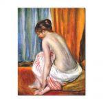 Tablou Arta Clasica Pictor Pierre-Auguste Renoir Back view of a bather 1893 80 x 100 cm