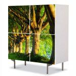 Comoda cu 4 Usi Art Work Peisaje Trunchiuri in linie, 84 x 84 cm