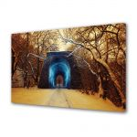 Tablou Canvas Iarna Tunel iarna