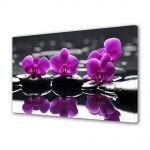Tablou Canvas Flori Orhidee pe apa