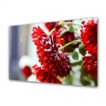 Tablou Canvas Luminos in intuneric VarioView LED Flori Flori rosii ninse