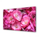 Tablou VarioView MoonLight Fosforescent Luminos in intuneric Flori Trandafiri violet salbatici