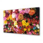 Tablou Canvas Flori Multitudine de culori