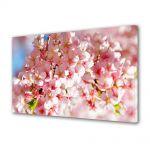 Tablou Canvas Flori Flori zambind la soare