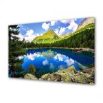 Tablou Canvas Luminos in intuneric VarioView LED Flori Lac montan