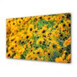 Tablou Canvas Flori Abundenta de galben