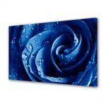 Tablou Canvas Luminos in intuneric VarioView LED Flori Trandafir albastru
