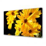 Tablou Canvas Flori Floricele galbene