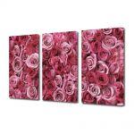 Set Tablouri Multicanvas 3 Piese Flori Spirale de iubire