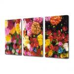 Set Tablouri Multicanvas 3 Piese Flori Multitudine de culori