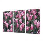 Set Tablouri Multicanvas 3 Piese Flori Flori pe camp