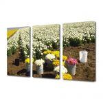 Set Tablouri Multicanvas 3 Piese Flori Randuri de flori
