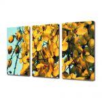Set Tablouri Multicanvas 3 Piese Flori Frumusete