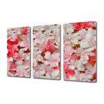 Set Tablouri Multicanvas 3 Piese Flori Petale care plutesc