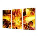 Set Tablouri Multicanvas 3 Piese Flori Liliac asiatic