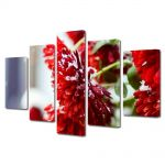 Set Tablouri Multicanvas 5 Piese Flori Flori rosii ninse