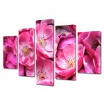 Set Tablouri Multicanvas 5 Piese Flori Trandafiri violet salbatici