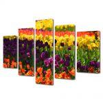 Set Tablouri Multicanvas 5 Piese Flori Curcubeu de flori