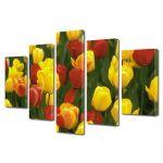 Set Tablouri Multicanvas 5 Piese Flori Lalele Galbene si Rosii