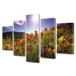 Set Tablouri Multicanvas 5 Piese Flori Soare puternic