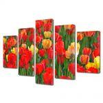 Set Tablouri Multicanvas 5 Piese Flori Miros de lalele