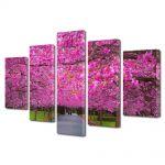 Set Tablouri Multicanvas 5 Piese Flori Gradina de ciresi japonezi