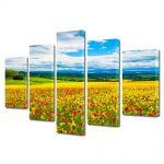 Set Tablouri Multicanvas 5 Piese Flori Camp multicolor