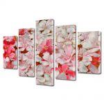 Set Tablouri Multicanvas 5 Piese Flori Petale care plutesc
