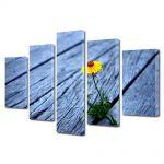 Set Tablouri Multicanvas 5 Piese Flori Putere