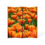 Paravan de Camera ArtDeco din 4 Panouri Peisaj Mare de lalele portocalii 105 x 150 cm