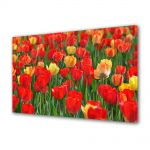 Tablou Canvas Luminos in intuneric VarioView LED Peisaj Lalele rosii si galbene
