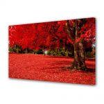 Tablou VarioView MoonLight Fosforescent Luminos in intuneric Peisaje Covor rosu sub copac