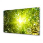 Tablou Canvas Luminos in intuneric VarioView LED Peisaj Raze de soare