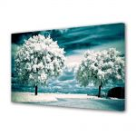 Tablou Canvas Peisaj Copaci albi