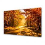 Tablou Canvas Peisaj Drum tomnatic
