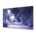 Tablou Canvas Peisaj Ninge