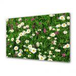 Tablou Canvas Peisaj Flori diverse