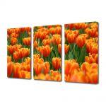 Set Tablouri Multicanvas 3 Piese Peisaj Mare de lalele portocalii