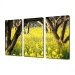 Set Tablouri Multicanvas 3 Piese Peisaj Floricele sub copaci
