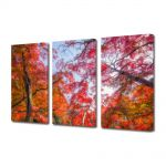 Set Tablouri Multicanvas 3 Piese Peisaj Suprarealism