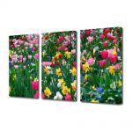 Set Tablouri Multicanvas 3 Piese Peisaj Flori inghesuite