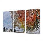 Set Tablouri Multicanvas 3 Piese Peisaj A venit iarna